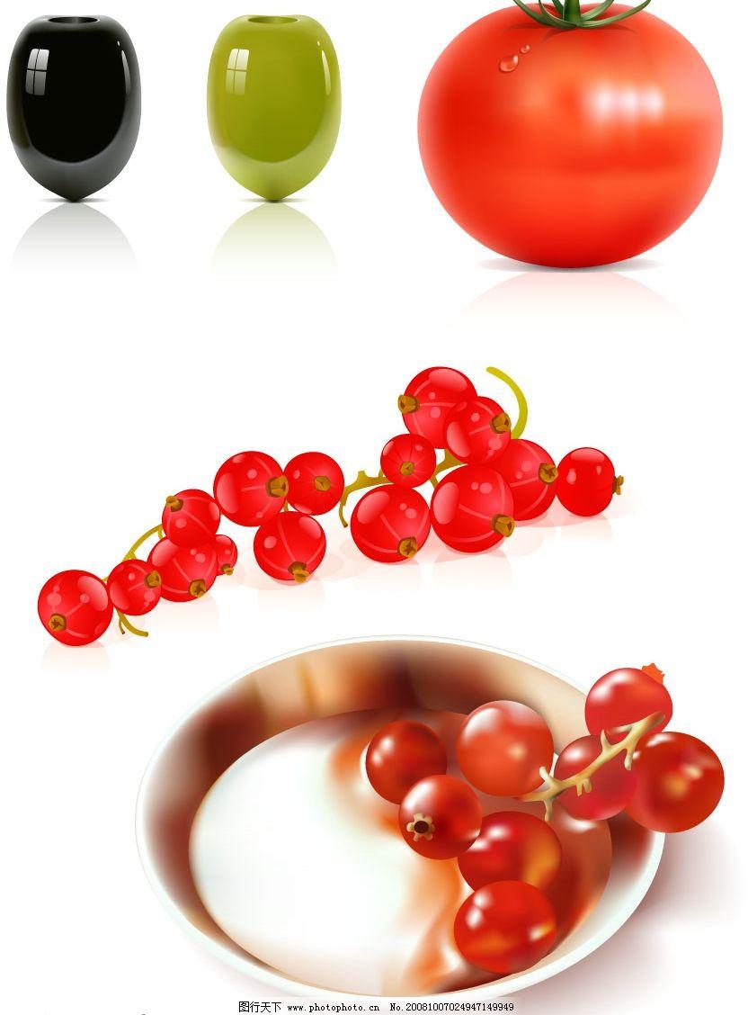 4款蔬果矢量素材图片