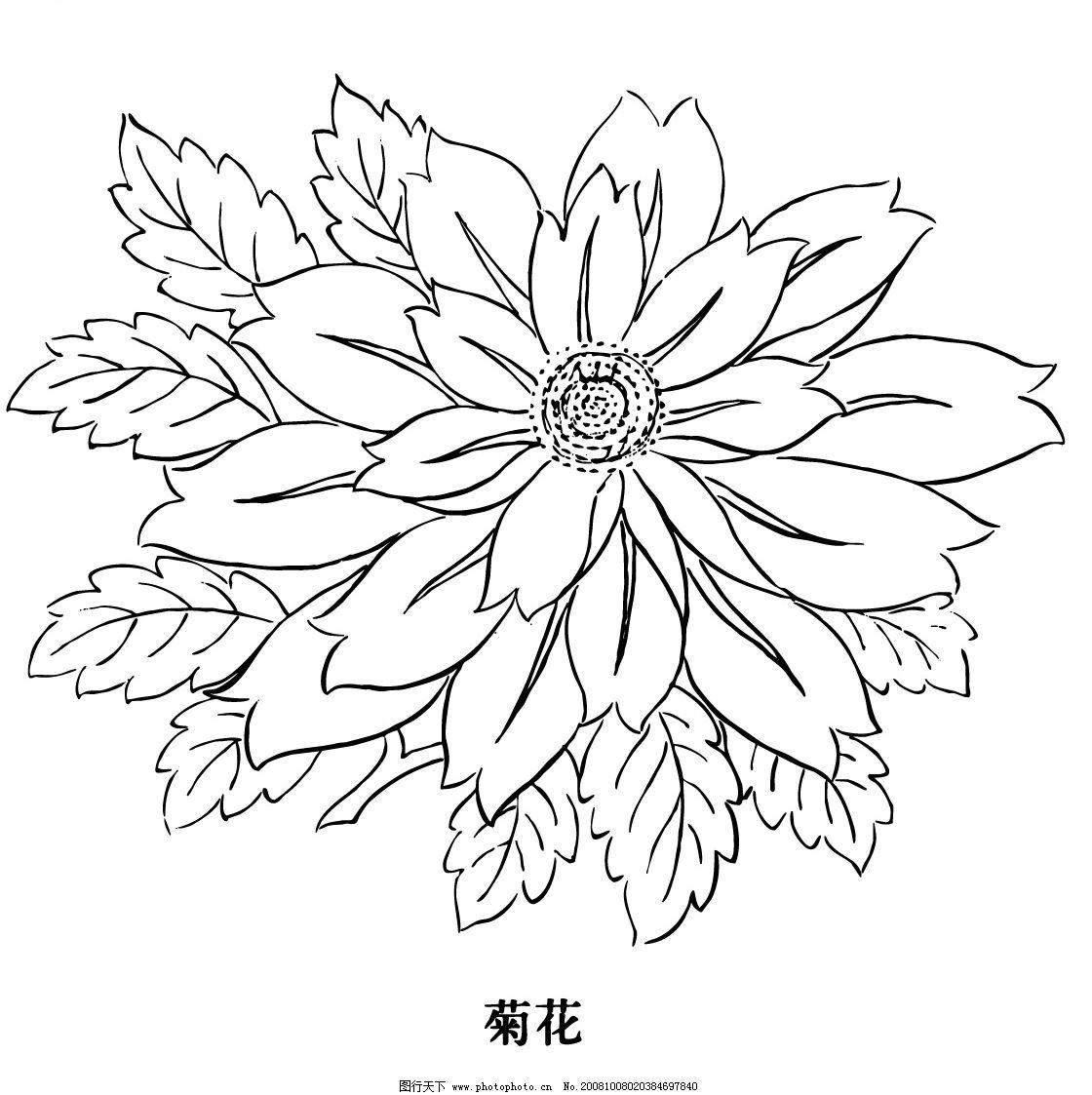 菊花 中国古代图案 云边寿团 花纹花边 花团 古典 喜庆符号 传统服饰