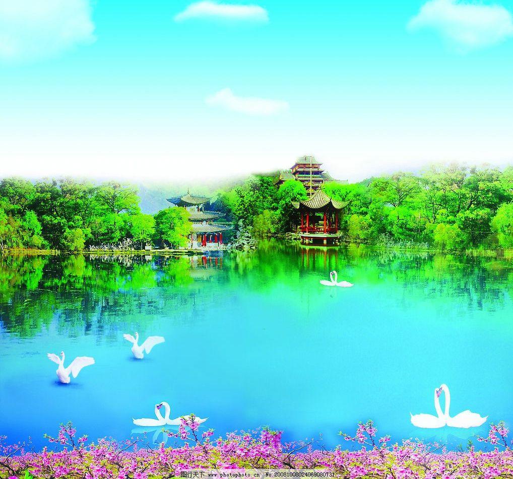桃园风光 世外桃园 自然风景 蓝天白云 美丽的天鹅 自然景观 自然风光