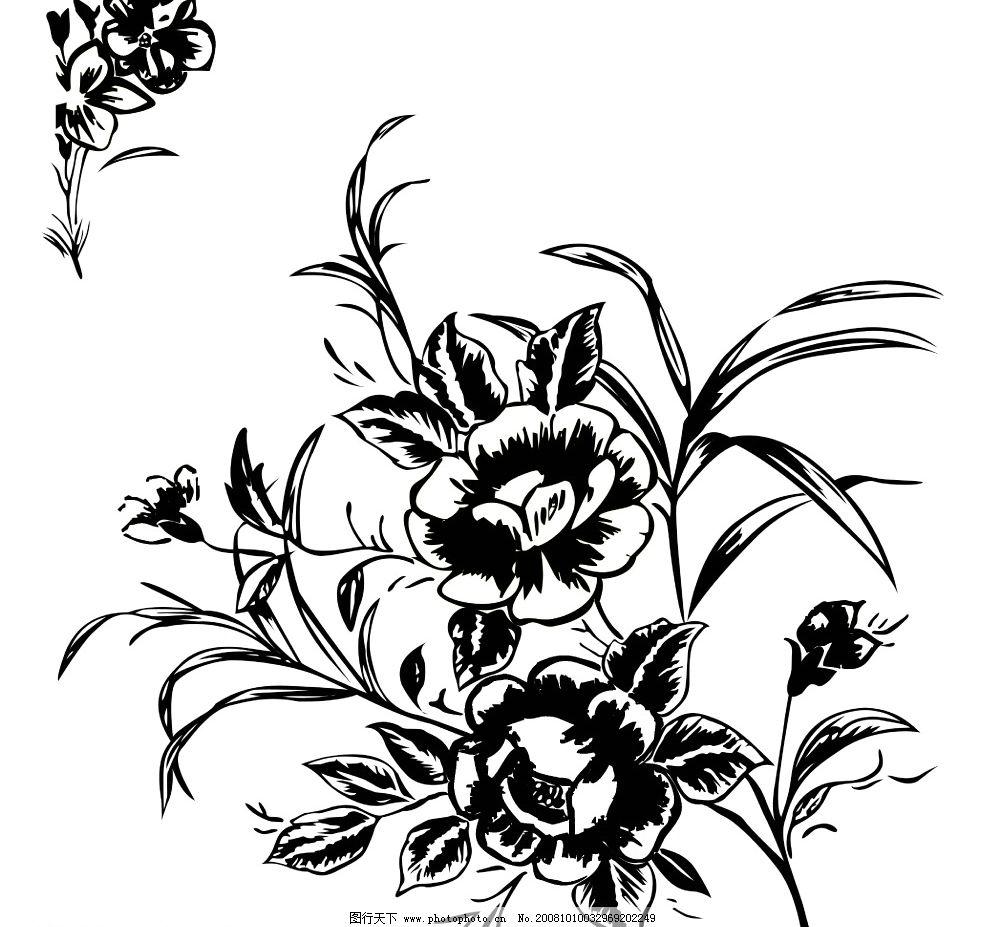 黑白花图片