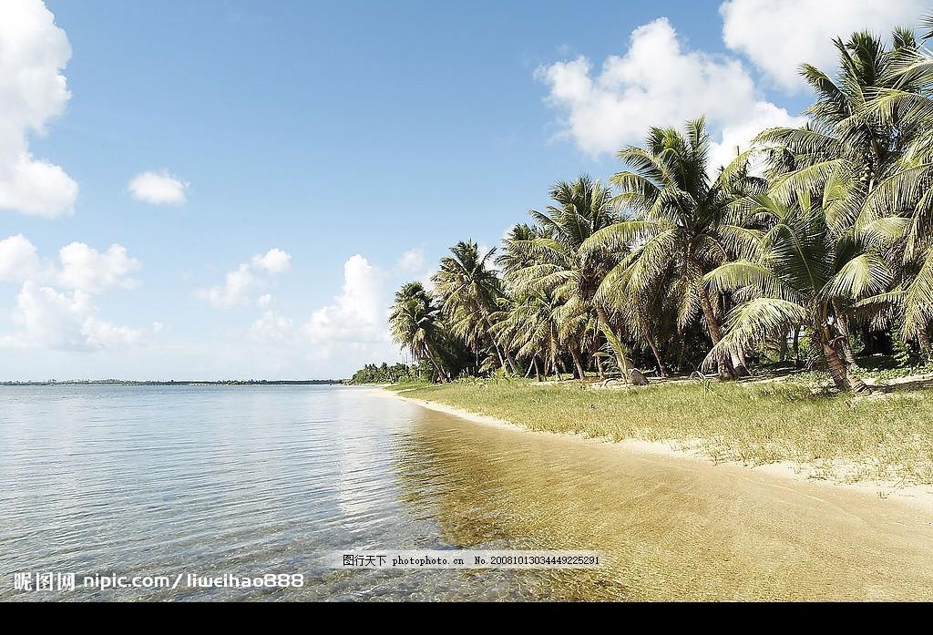 热带岛屿 蓝天白云 椰林 椰树 海边风景 自然景观 山水风景 摄影图库
