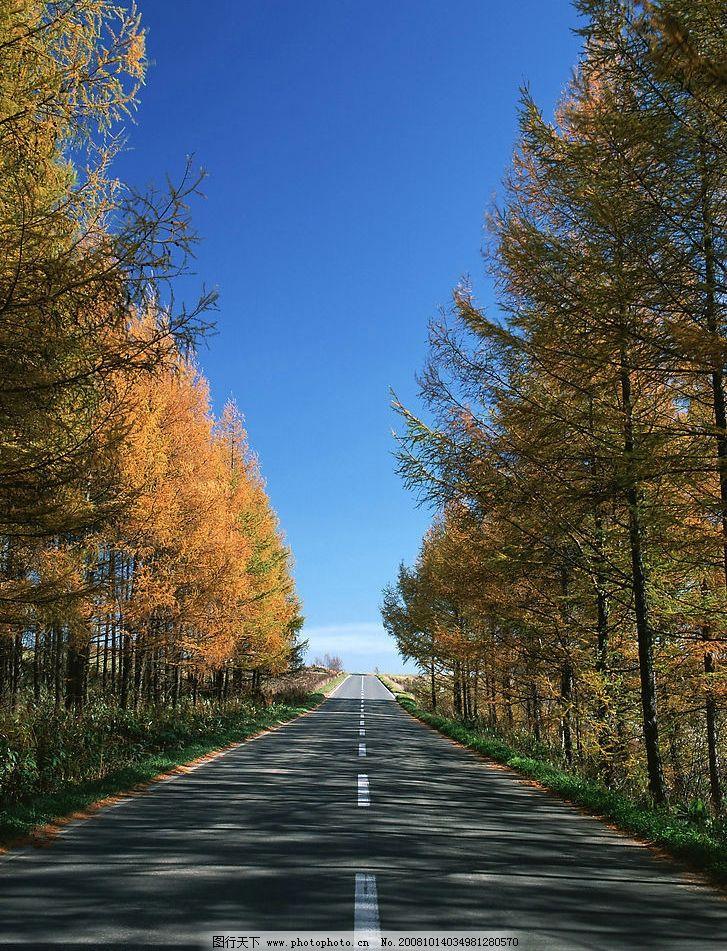 道路 笔直的道路 柏油路 路边风景 蓝色天空 自然景观 其他 摄影图库