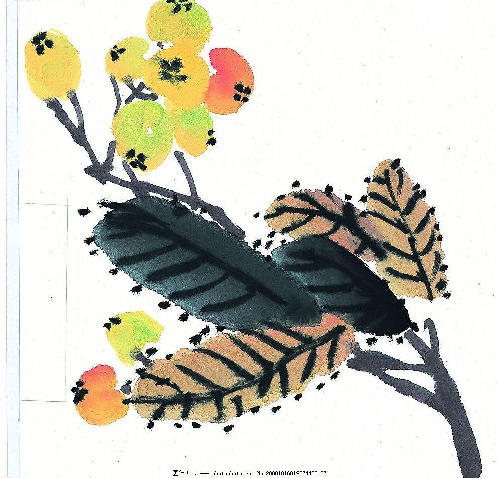 枇杷 水果 国画 果树 文化艺术 绘画书法 设计图库