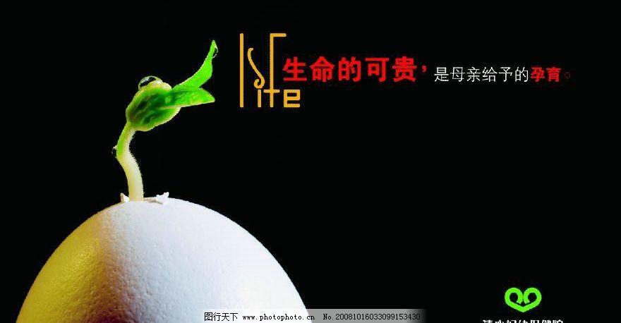 医院宣传海报 生命的可贵 鸡蛋 发芽 母亲 孕育 源文件库