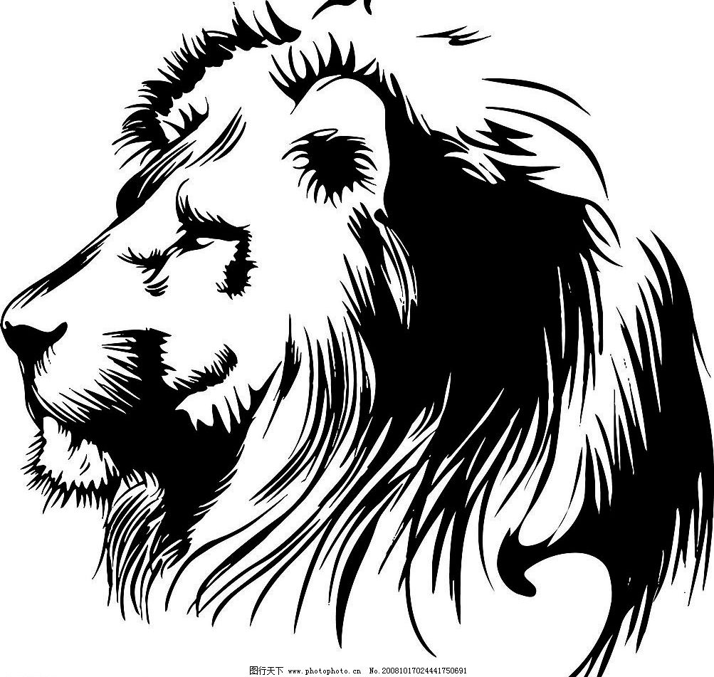 黑白狮子头矢量素材图片
