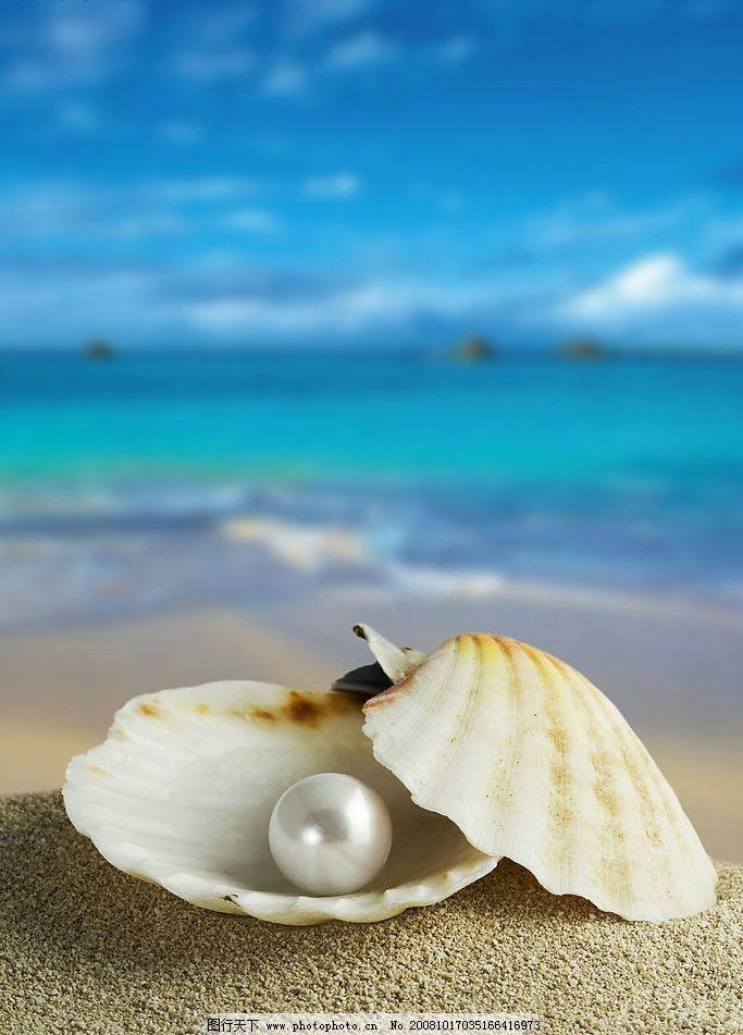 珍珠 贝壳 海边 大海 蓝天 生物世界 海洋生物 摄影图库 300dpi jpg