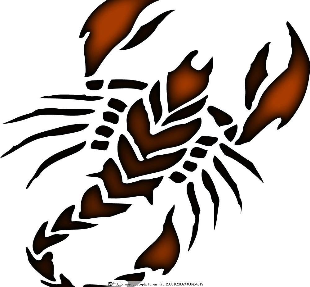 蝎子 生物世界 野生动物 矢量图库   ai