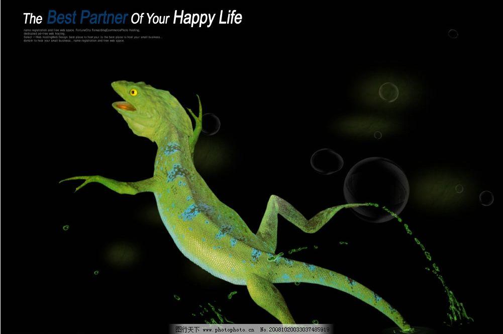 跳跃的蜥蜴 爬行类动物 动物世界 设计素材 生物世界 绿波 源文件库
