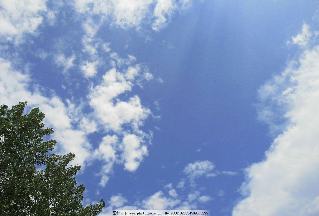 蓝天白云绿树图片