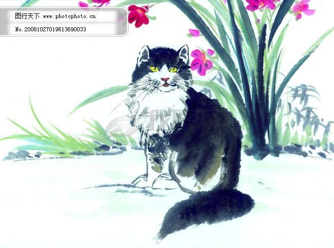 猫咪 病猫 花猫 小猫 动物 可爱 家猫 中华艺术绘画