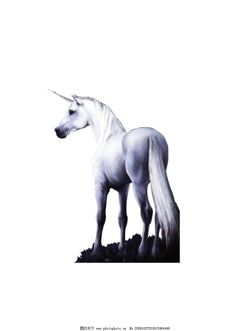 白马 马 有犄角的马 白色的马 psd分层素材 源文件库 300dpi psd