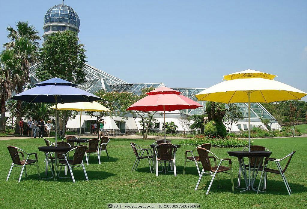 济州岛植物园大草坪图片