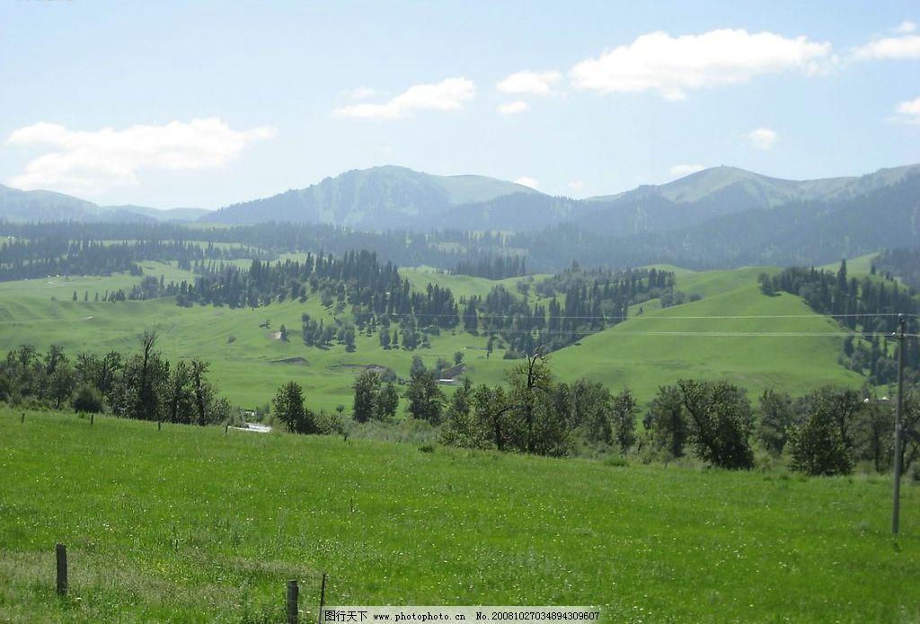 那拉提草原风光 新疆 那拉提 草原 风景 山 树 自然景观 自然风景