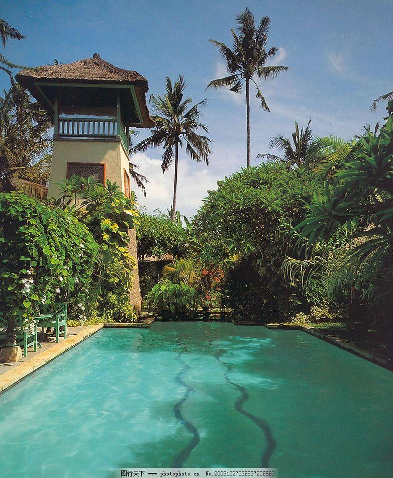 游池 植物 碧水 别墅 椰树 建筑园林 园林建筑 设计索材 摄影图库