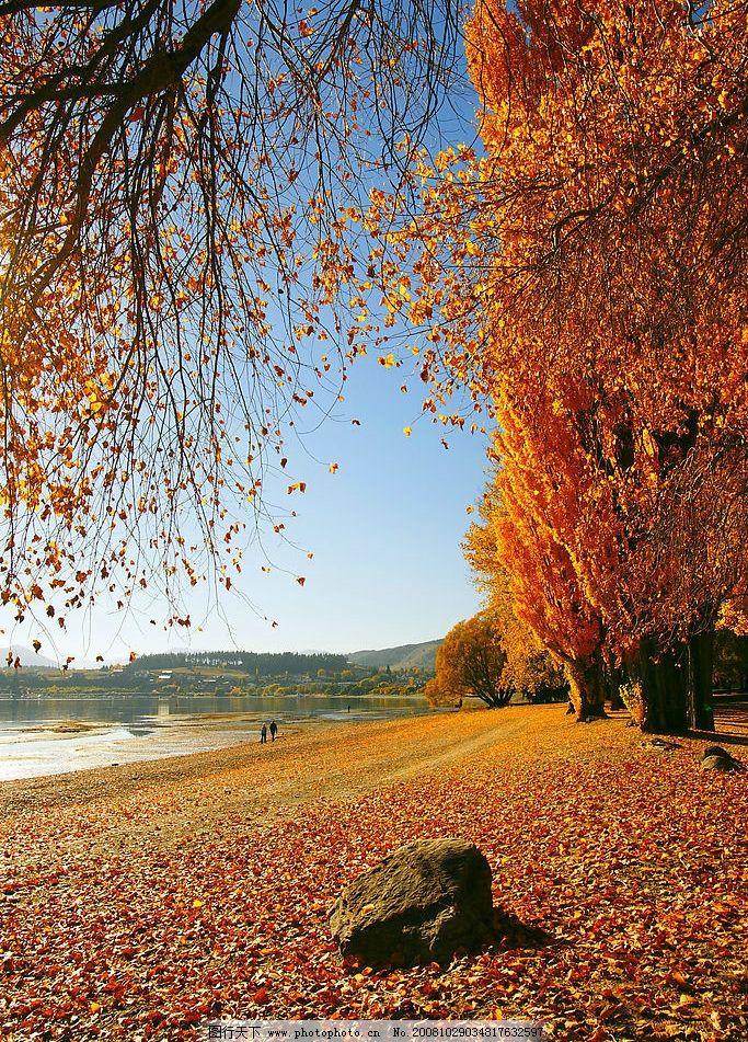 自然景观 秋天 高精位图 黄昏 地产 夕阳 大海 辉煌 唯美 天空 海滩