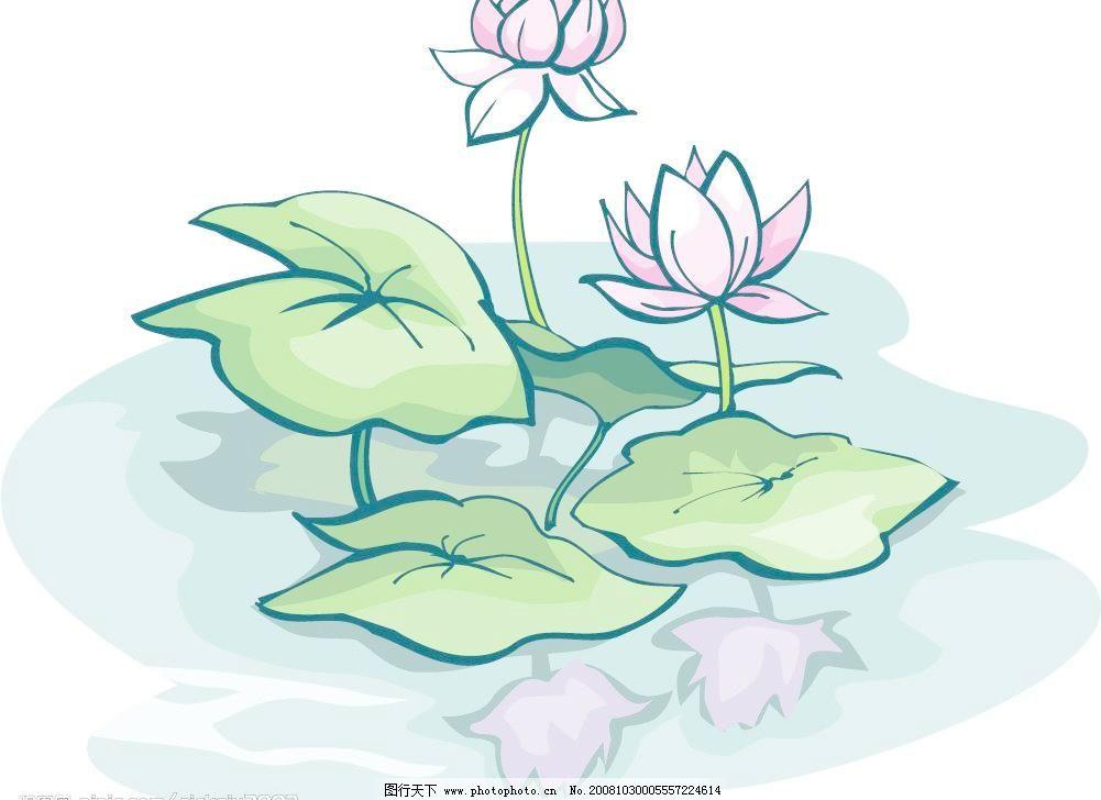 原创手绘荷花 荷花 水 莲花 倒影 自然景观 其他 矢量图库 cdr 自然风