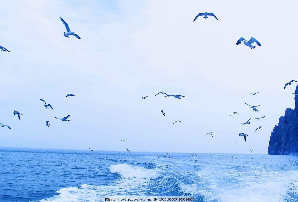 长岛风光 天空 海水 浪花 海鸥 礁石 旅游摄影 自然风景 摄影图库
