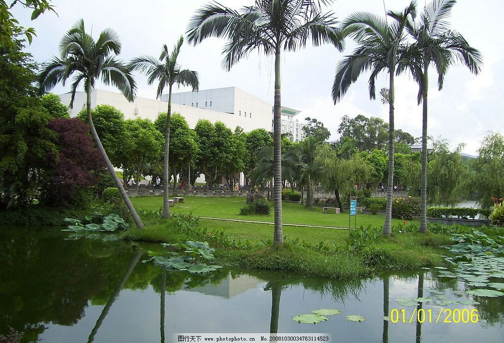 校园小路 湖面 湖水 草坪 校园风光 绿树 建筑景观 福建农林大学风光