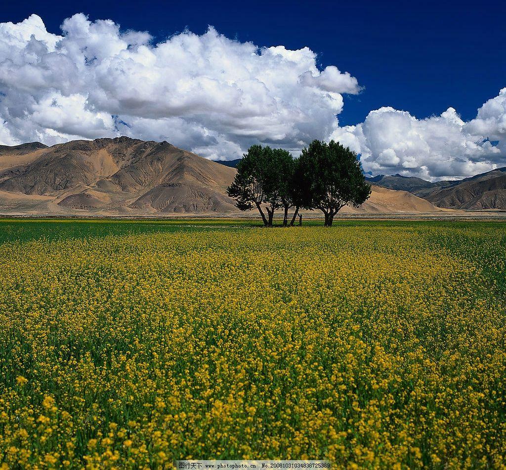如画田园风景图片
