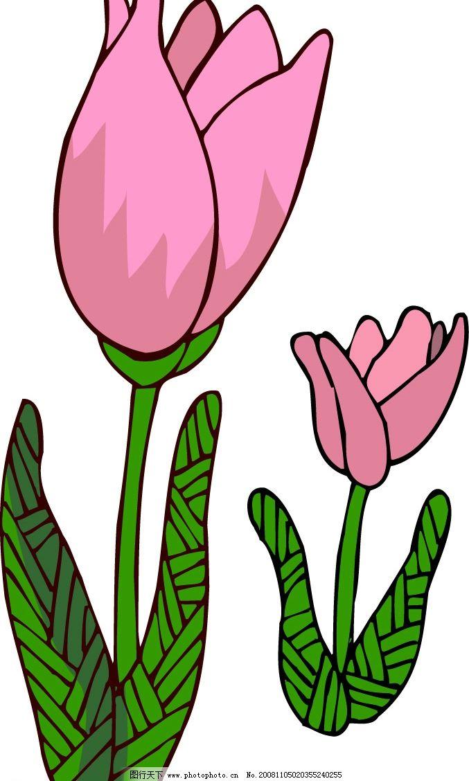 郁金香 底纹边框 花纹花边