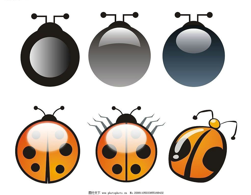 甲壳虫 夹克虫 其他矢量 矢量素材 矢量图库 cdr
