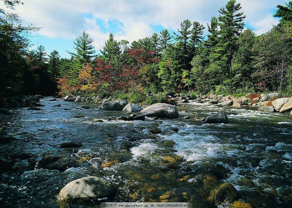树木 树林 森林 河流 小河 河水 石头 天空白云 自然景观 山水风景