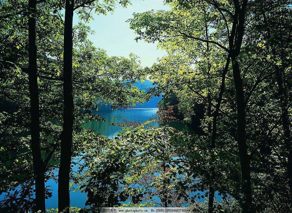 山水剪影 树木 树林 湖 湖水 摄影图库