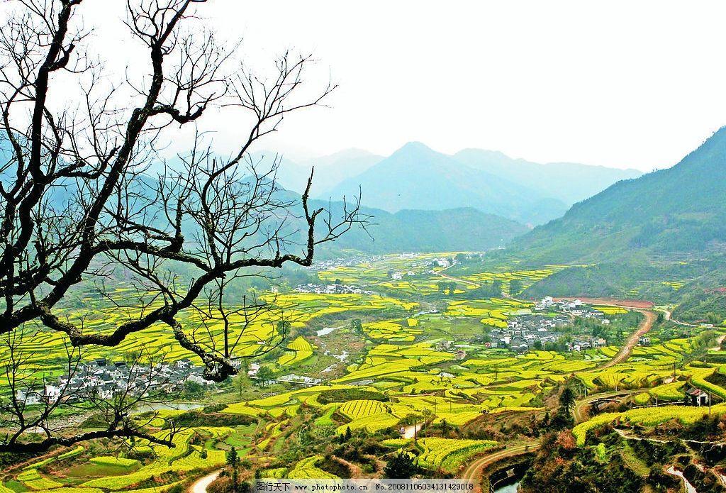 美丽乡村图片_自然风景_旅游摄影_图行天下图库