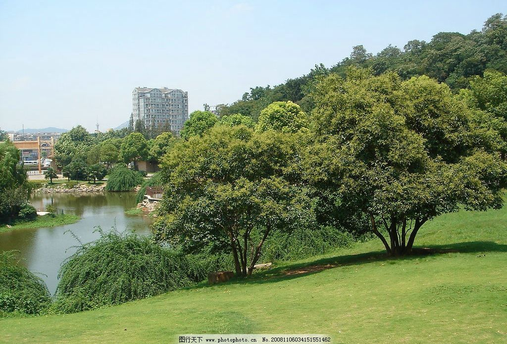 森林小河 南京 红山动物园 草地 风景 风光 旅游摄影 摄影图库