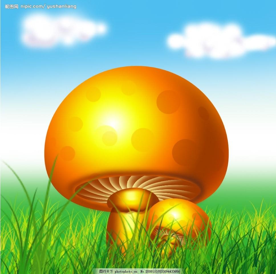 手绘稿(蘑菇)