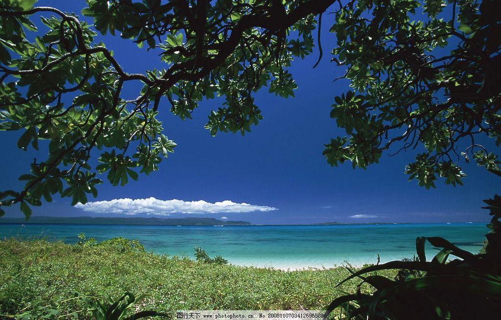 夏威夷 岛上摄影海边 蓝天 树木 大海 旅游摄影 摄影图库