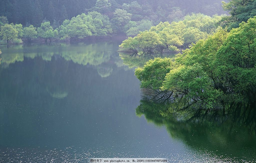 山水剪影 树木 树林 森林 湖 湖畔 湖水 自然景观 山水风景 摄影图库