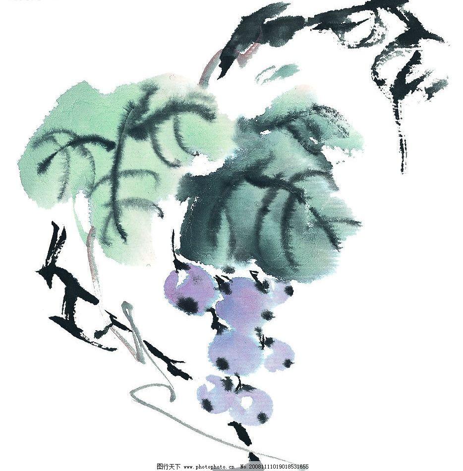 葡萄 水果 果蔬 提子 国画 艺术 文化艺术 绘画书法 设计图库 72dpi