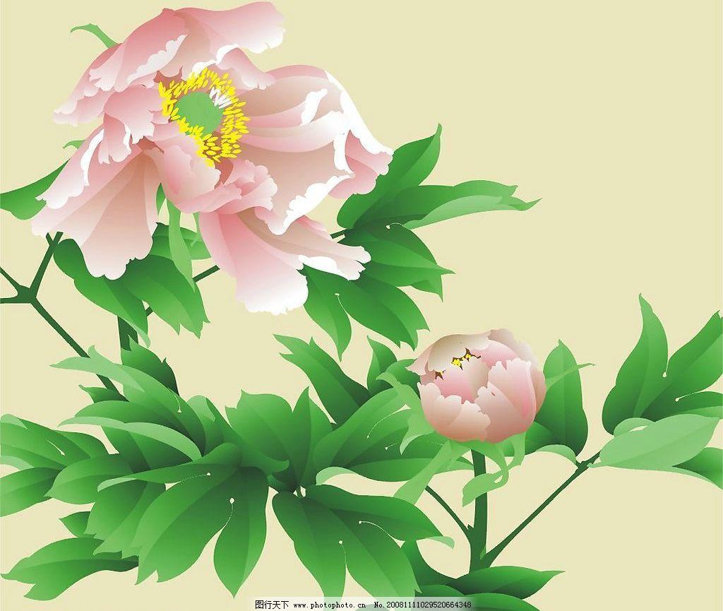 矢量手绘牡丹花图片