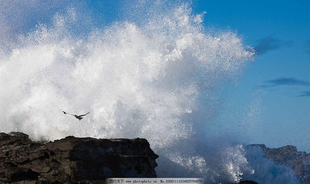 巨浪 礁石 海鸥 蓝天 大海 摄影图库