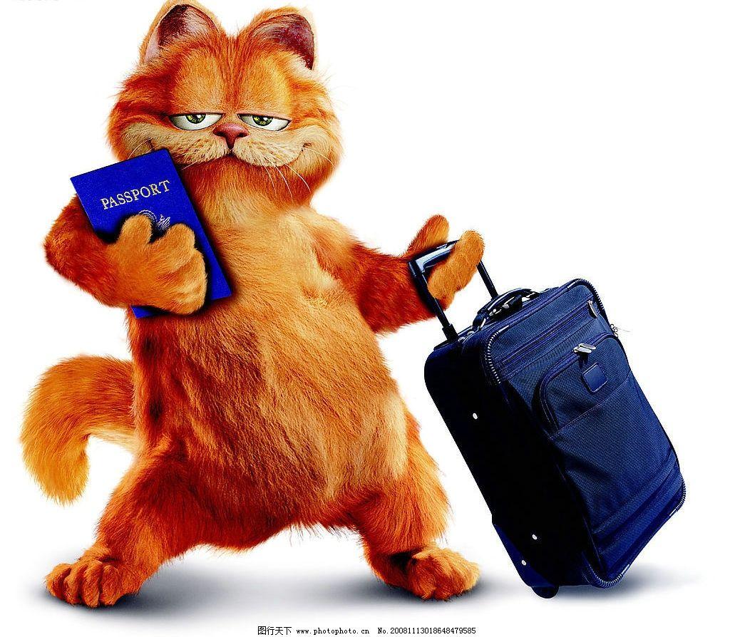 可爱卡通加菲猫图片