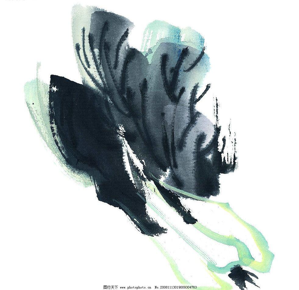 白菜5 白菜 蔬菜 果蔬 国画 艺术 文化艺术 绘画书法 设计图库 72dpi