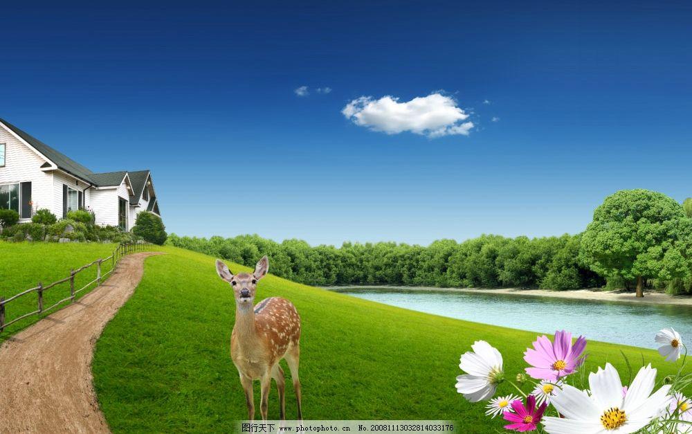 湖水 水泡 蓝天白云 天空 背景 绿叶 树叶 环境 晴朗 风景 房子 鹿 花