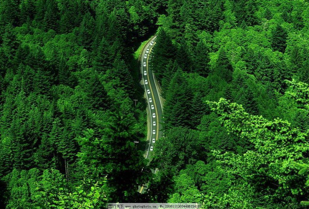 绿色公路 山林 自然景观 山水风景 摄影图库