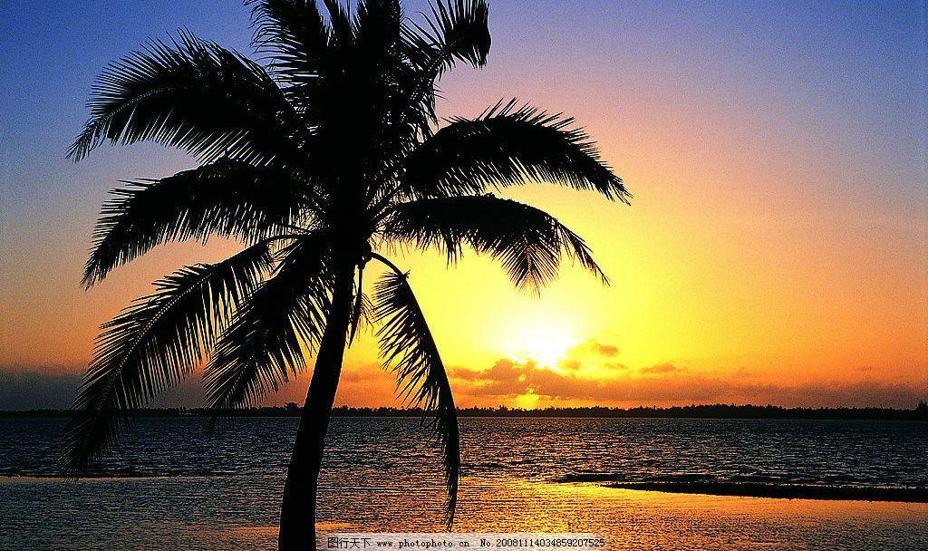 沙滩 小岛 黄昏 晚霞 椰树 夕阳 波浪 大海 自然景观 自然风景