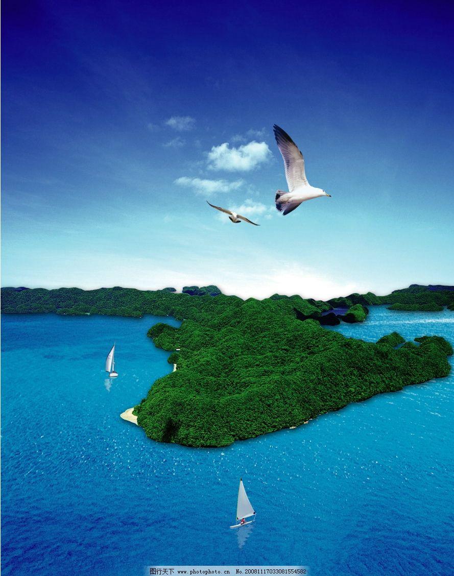 海岛 帆船 海鸥图片