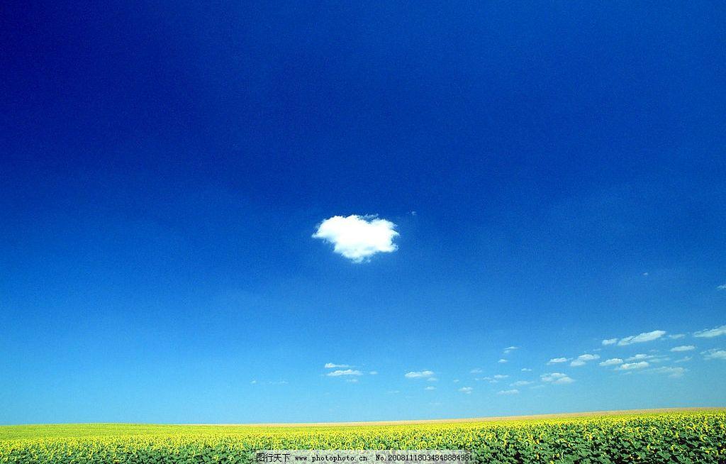 蓝天草地 白云 自然景观 自然风景 摄影图库