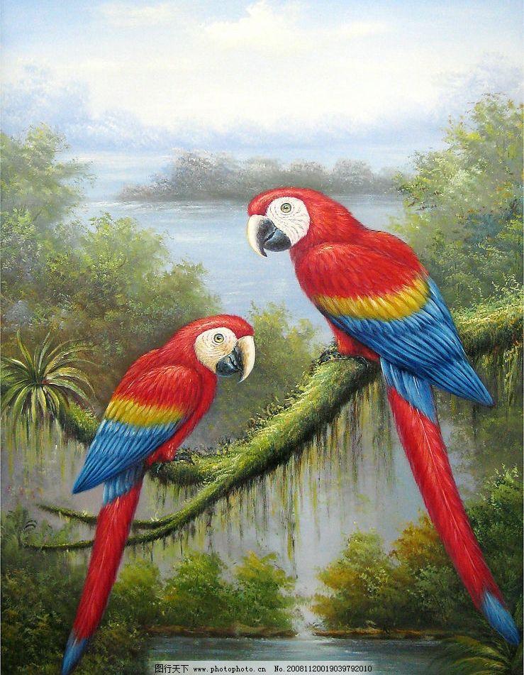鹦鹉 油画动物 文化艺术 美术绘画 摄影图库 180dpi jpg