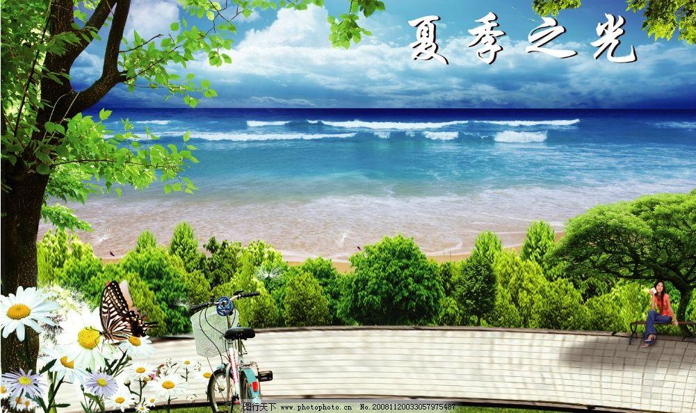 自行车 椅子 公园 沙滩 海滨 大树 白云 菊花 夏日风光 风景树 海边