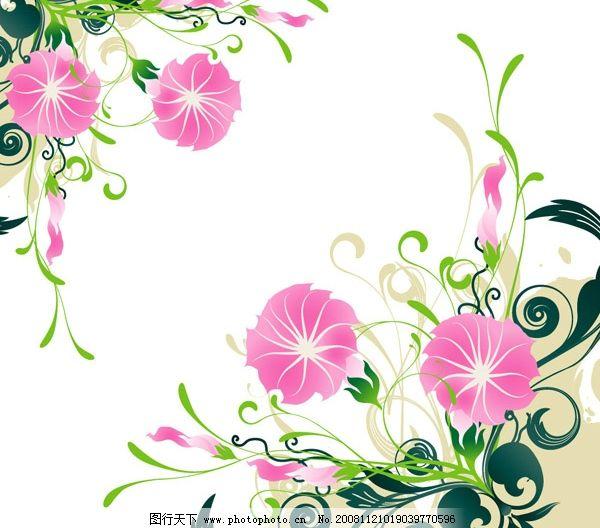 矢量牵牛花 对花 矢量线条花形 底纹边框 花纹花边 矢量图库 文化艺术