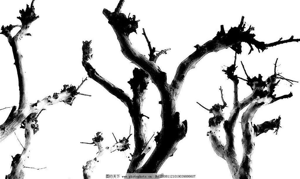水墨树枝 水墨画 树枝 树干 文化艺术 绘画书法 设计图库 72dpi jpg
