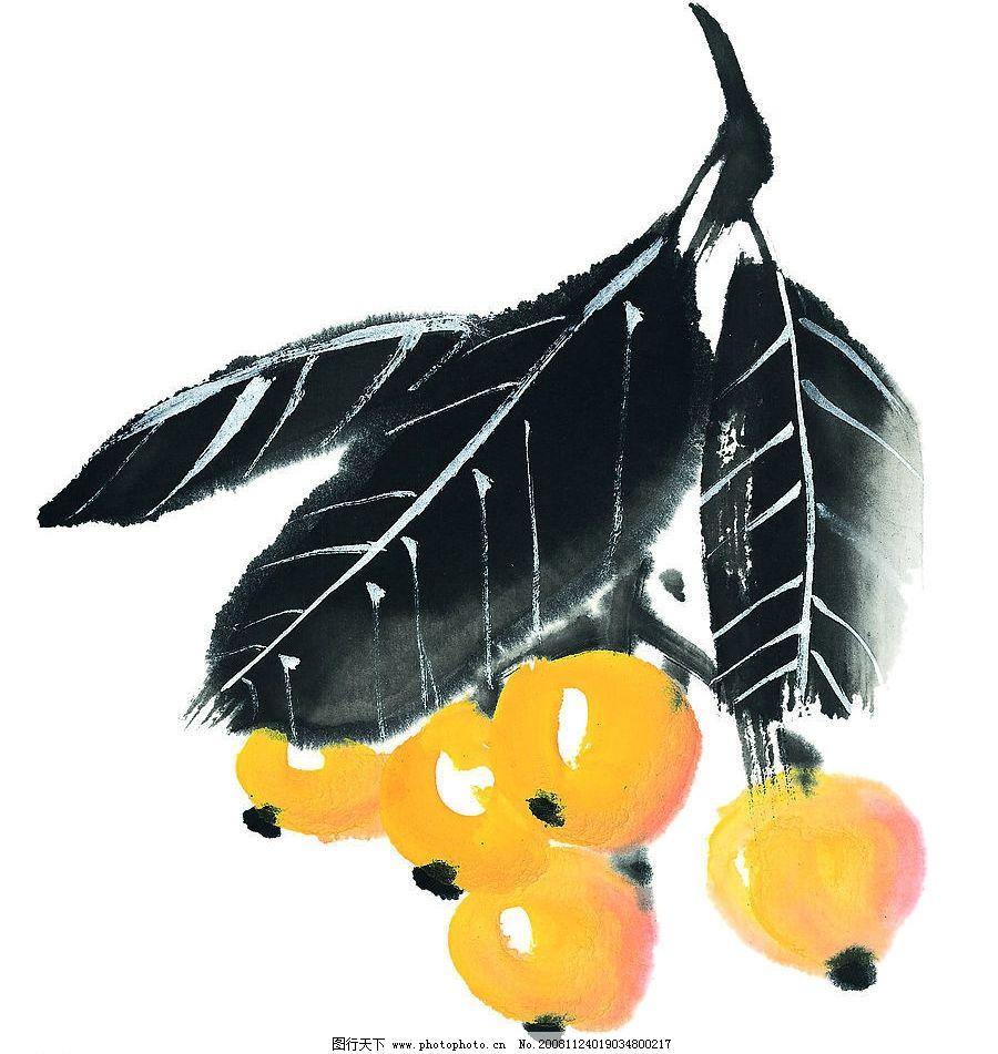 枇杷 水果 果蔬 素材 国画 艺术 文化艺术 绘画书法 设计图库 72dpi