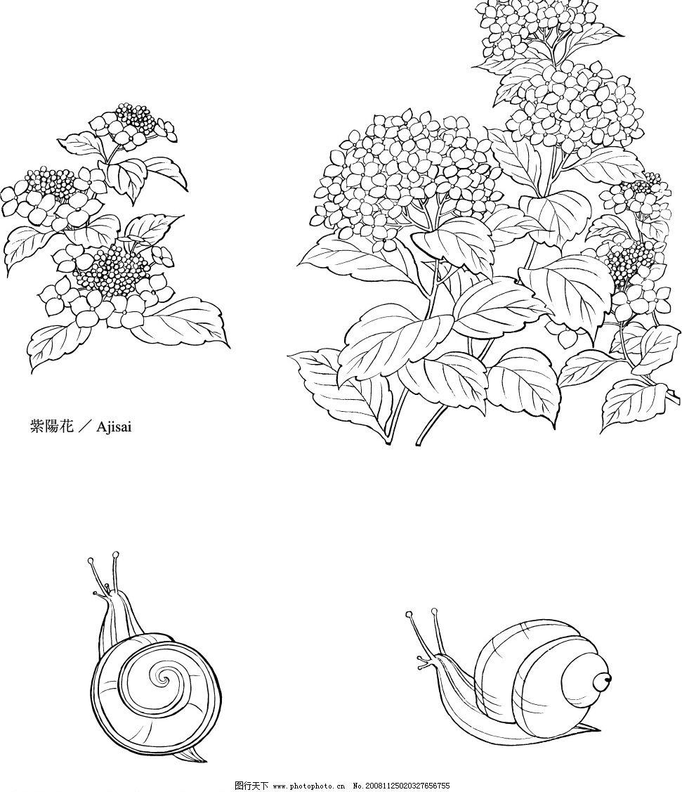 花与小动物 紫阳花与蜗牛 底纹边框 花纹花边 矢量图库 eps