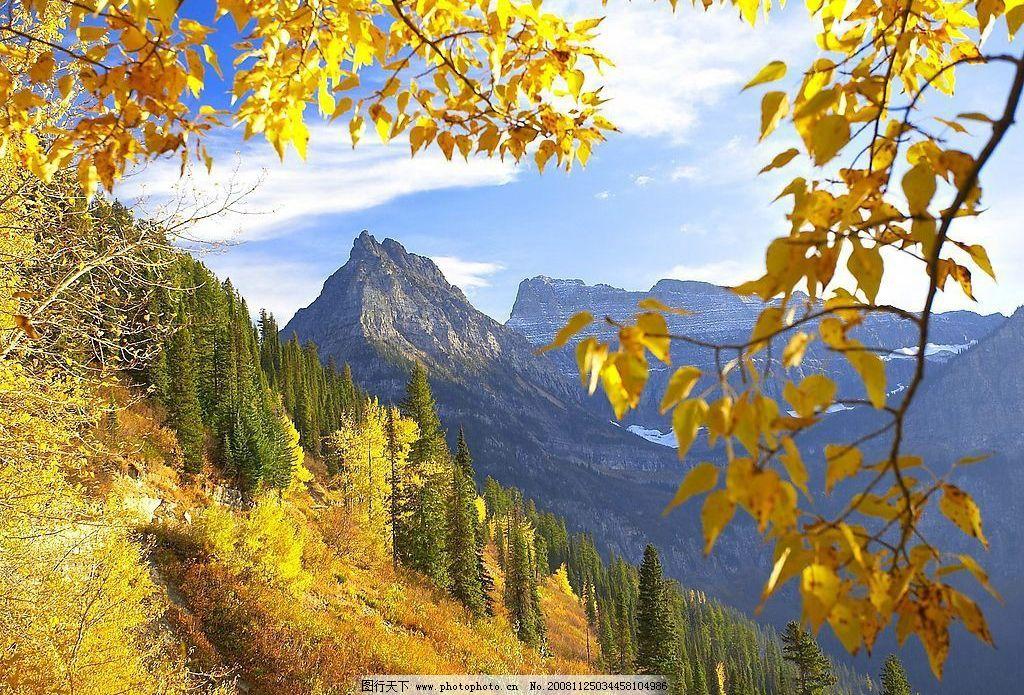 风景 枫叶 山 自然景观 山水风景 摄影图库 72dpi jpg