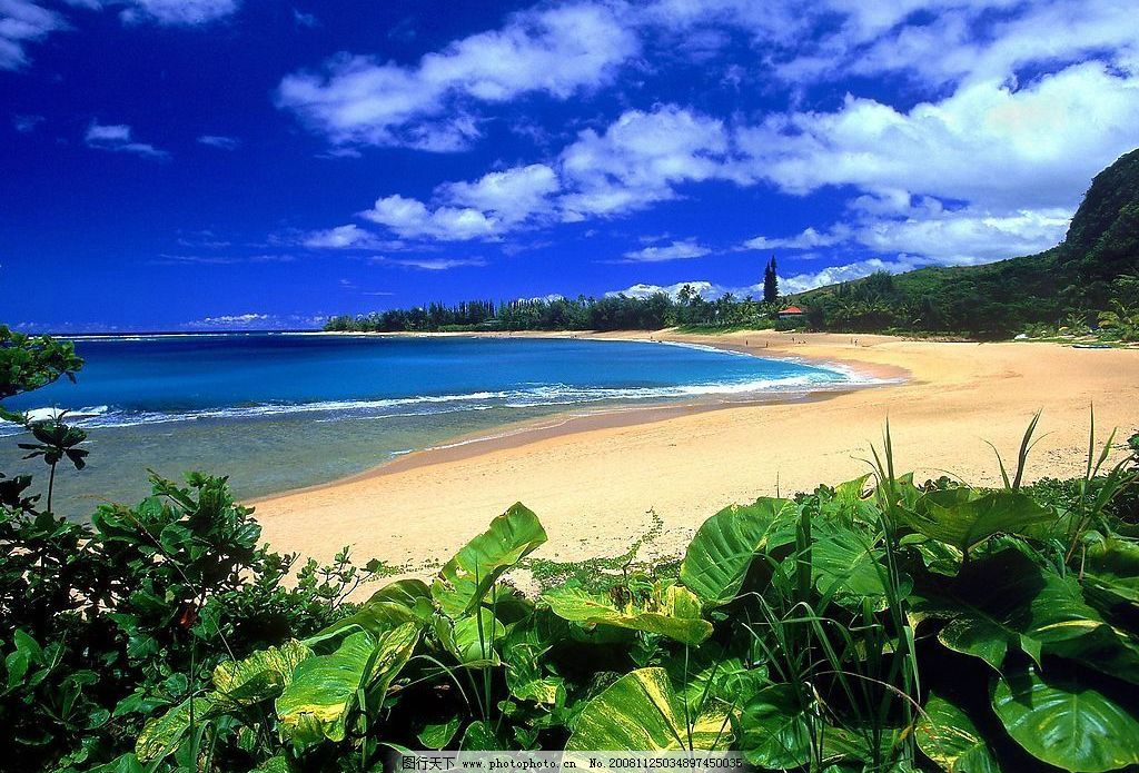 夏威夷风光壁纸 夏威夷 海滩 蓝天 白云 自然景观 自然风景 摄影图库